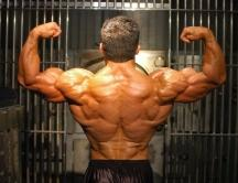 biggest natural bodybuilder Jim Cordova