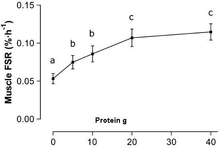 protein dose response and protein synthessis after workout