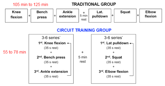 Circuit Weight Training Study