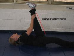 static stretching for hamstrings